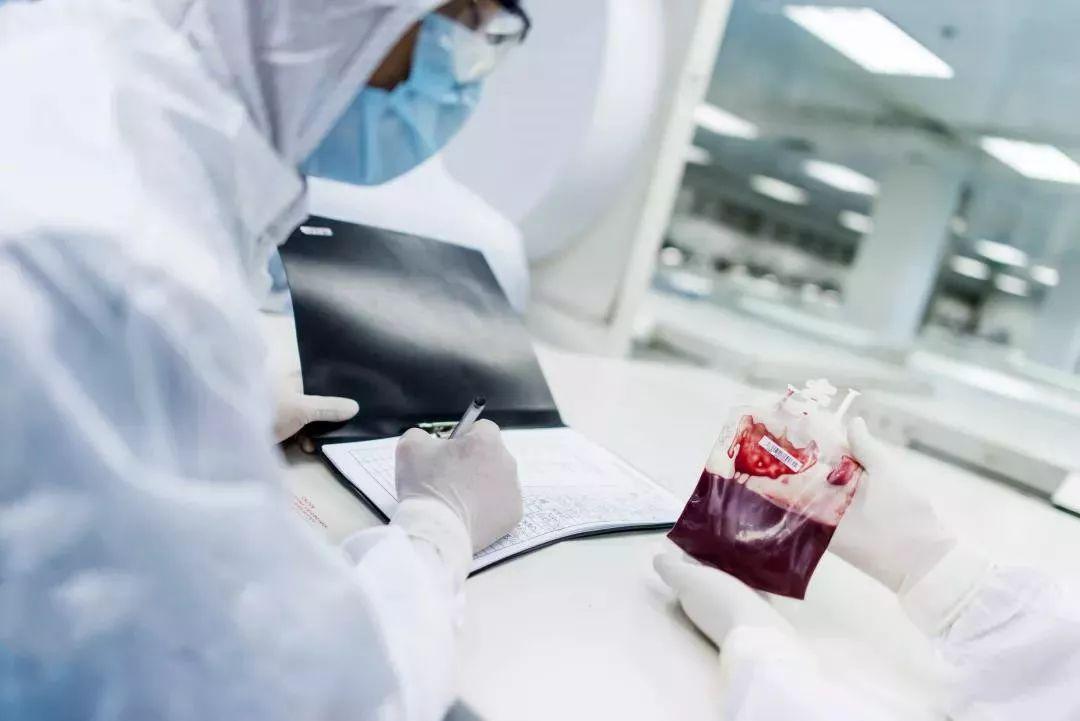 河南自体脐带血新用途:自体脐带血可治疗听力损失