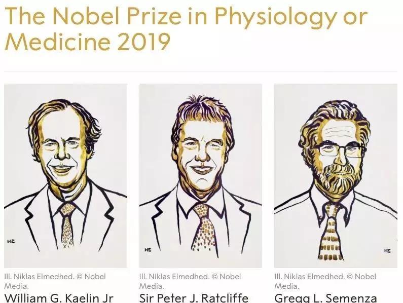 本届诺贝尔奖癌症和干细胞成为热点!细胞的问题细胞解决