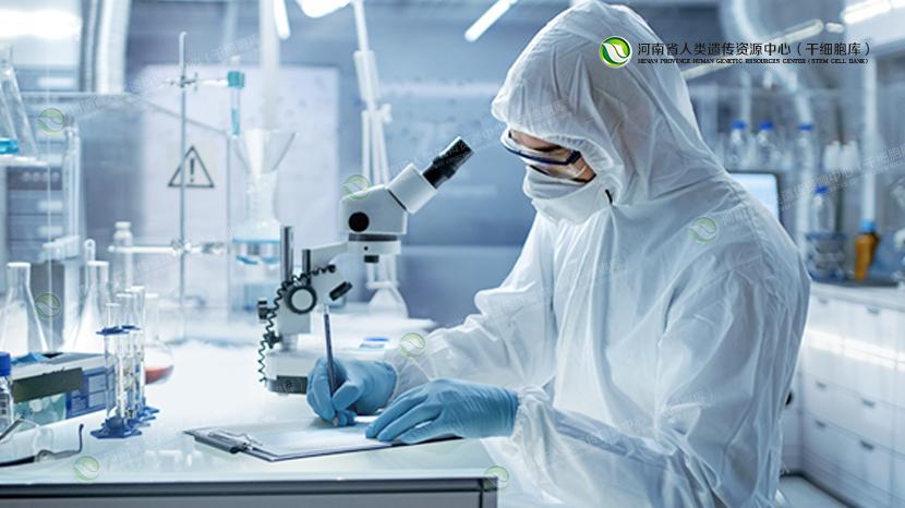 间充质干细胞的黄金时代