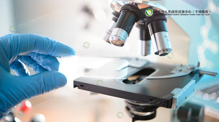 了解你能不能或者需不需要输注干细胞