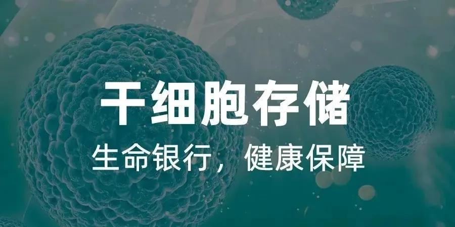 在我国,每100个家庭就有1个家庭选择储存新生儿干细胞