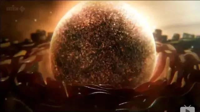 储存干细胞,是今后迈入再生医学大门的一张门票